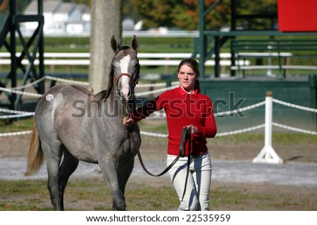Saratoga Springs, NY - October 12, 2008: A weanling being walked by its handler at the 2008 New York State Breeders fall breeding stock sale, on the backstretch at Saratoga Race Track, Oct 12, 2008 - stock photo