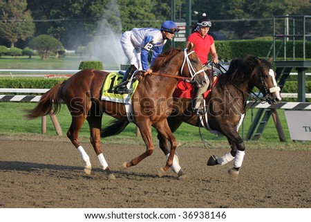 """SARATOGA SPRINGS, NY- SEPT 7: Jamie Theriot aboard """"Dublin"""" in the Post Parade for the Grade I Hopeful Stakes at Saratoga Race Track, September 7, 2009 in Saratoga Springs, NY. - stock photo"""