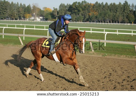 SARATOGA SPRINGS - October 21: An Unknown Rider Gallops a Horse on Cold Frosty Morning on the Oklahoma Training Track on October 21, 2005 in Saratoga Springs, NY. - stock photo
