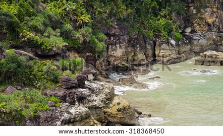 SARAWAK, MALAYSIA - 27TH NOVEMBER 2014; Beautiful shoreline from Bako National Park, West Sarawak, Borneo, Malaysia. - stock photo