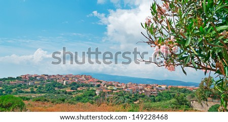 Sardinian small town with pink oleanders on the foreground