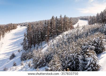 Sarikamis is one of the most beautiful ski resort in Kars province ,Turkey  - stock photo