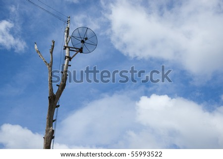 satellite on a tree