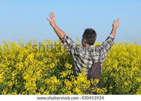 Satisfied farmer with hands up in blooming canola plant field, oil seed rape - stock photo