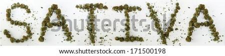 "Sativa Spelled With Marijuana. The word ""Sativa"" spelled out with real marijuana. - stock photo"