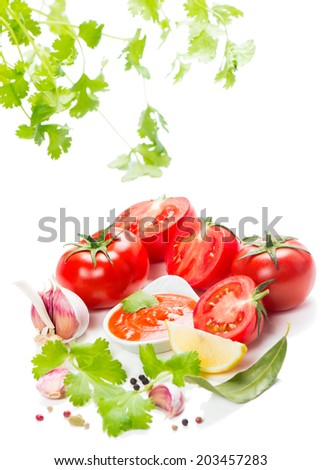 Sauce, tomatoes and spices on the background of green leaves of  coriander, isolated on white