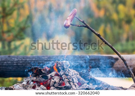 Sausage heating above the campfire in Finland. In the background out of focus in autumnal forest. Focal point is the sausage. - stock photo