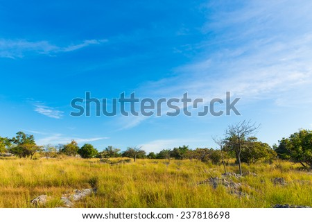 Savannah Landscape in Si Chang island, Thailand. - stock photo