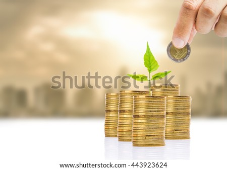 save money for investment concept - stock photo