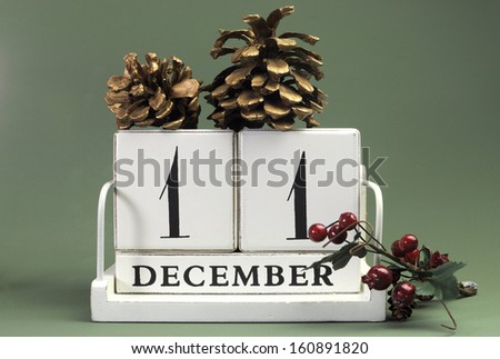 Save the Date calendar with Winter theme colors, fruit and flowers, for birthdays, special occasions, holidays, weddings, website events, or Christmas Advent calendar days, for December 11 - stock photo