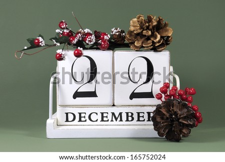 Save the Date calendar with winter theme colors, fruit and flowers, for birthdays, special occasions, holidays, weddings, website events, or Christmas Advent calendar days, for December 22 - stock photo