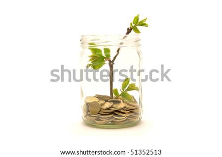 Savings in the jar - stock photo