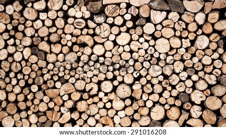 Saw timber prepared for winter heating season