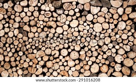 Saw timber prepared for winter heating season - stock photo