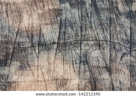 Sawed tree texture - stock photo