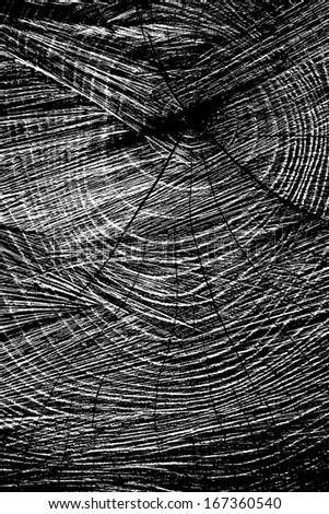 Sawed Wood Texture. Vertical view. - stock photo