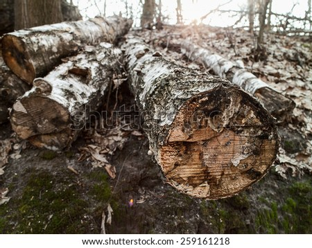 Sawmill. Abstract environmental backgrounds for your design