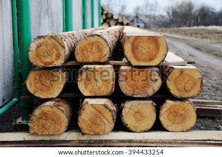 sawn logs stacked in rows - stock photo