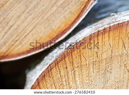 sawn up tree, cork layer close-up, abstract background - stock photo