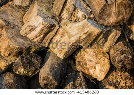 sawn wood. a bunch of wooden stumps.