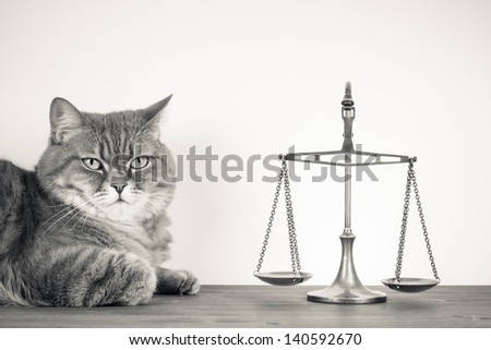 Scales  and cat on a table. Vintage sepia photo - stock photo