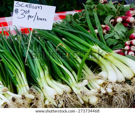 Scallion bunches next to sparkler radish at Fruits and Vegetables stall in University District farmer market (aka U-district) in Seattle, WA, USA - stock photo