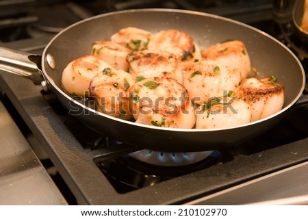 Scallops cooking on the stove  - stock photo