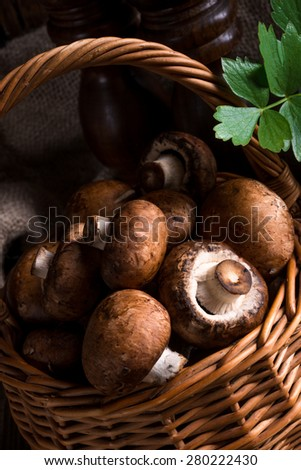 Scaly Wood Mushroom - stock photo