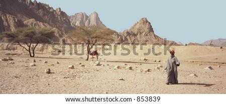 Scan of medium format's original negative shot in the Egyptian desert near January 2005 - stock photo