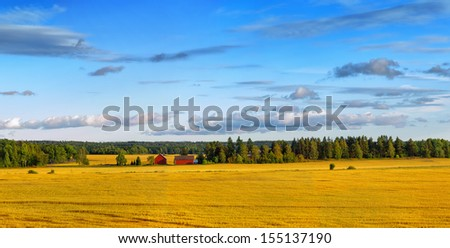 Scandinavian wheat landscape with typical red barn and house in forest - stock photo