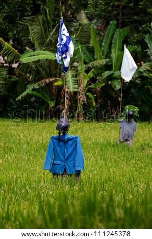 scarecrow dressed up in a jacket and helmet on  on a rice field - stock photo