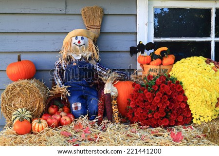 Scarecrow, Harvest and Flowers, Pumpkins, Corn (Typical Symbols) as decoration of Country House for Thanksgiving, Harvest and Fall