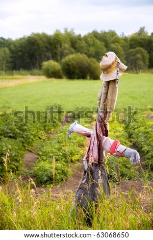 Scarecrow in a farmers field, protecting a garden. - stock photo