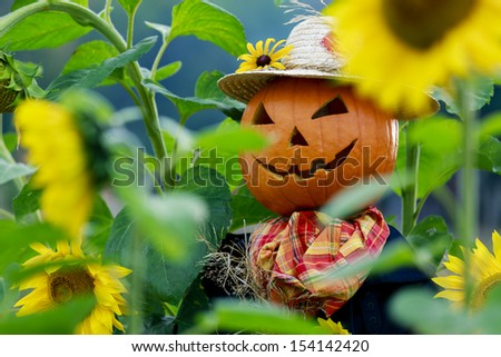 Scarecrow in the garden - Autumn harvests