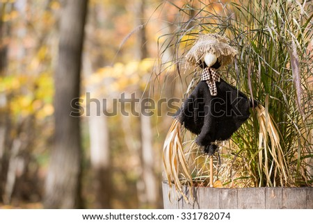 Scarecrow with Copy Space - Decorative scarecrow in front of a green sagebrush plant.  Muted fall colors and out of focus background.  Copy space in left frame if needed. - stock photo