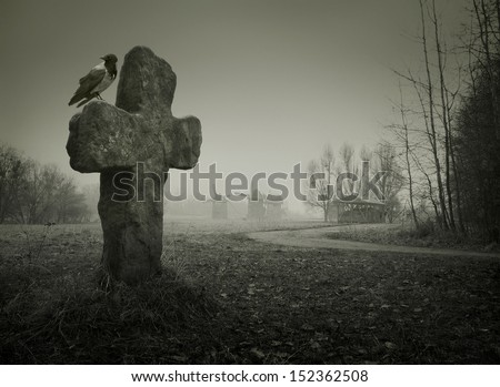 Scary background for Halloween. Old grave with a cross and the raven - stock photo