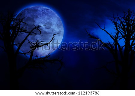 Scary, creepy forest at night and big full moon