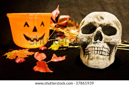 Scary Halloween night with skull