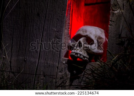 Scary Halloween skull bones sitting in hole in old abandoned wood building lit with red light - stock photo