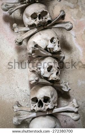 Scary Human Skulls - stock photo