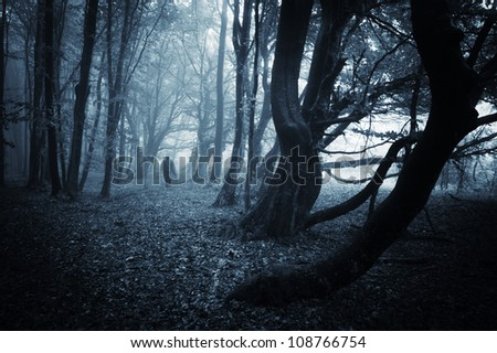 scary man with robe in dark forest - stock photo