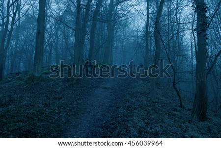 Scary road in the forest