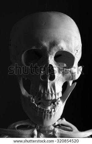 Scary Skeleton on black background - stock photo