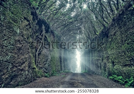 Scary tunnel - stock photo