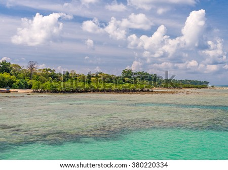 Scene at Bharatpur beach, Neil Island, Andaman, India  - stock photo