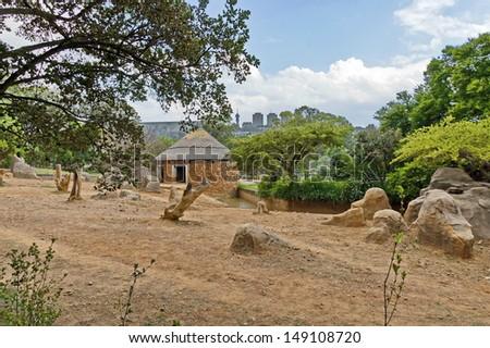 Scene from Johannesburg zoo to city Johannesburg - stock photo