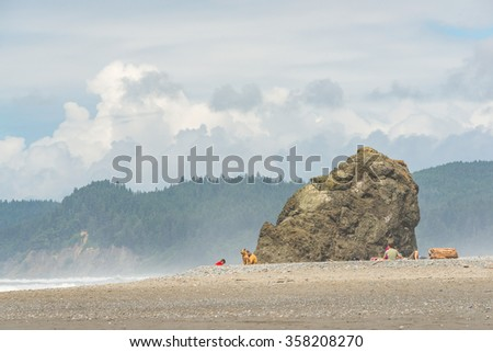 scene of sea stack and people on the beach on sunny day,Ruby beach,WA,usa. - stock photo