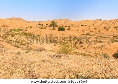 Scene of stone of the Sahara desert in the afternoon. Montain landscape.