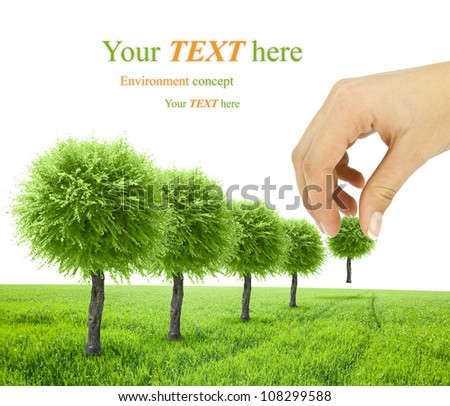 scene of the hand plant tree on green grass - stock photo