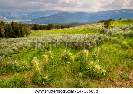 Scenery along the Beartooth Highway in Wyoming. - stock photo